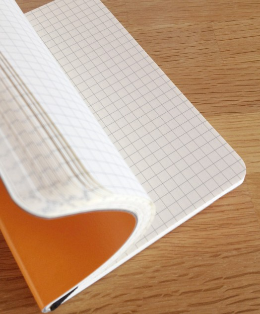 Brunnen recycled leather notebooks with squared paper