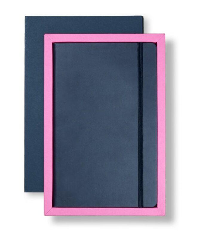 A5 Blue/Pink Castelli tray case