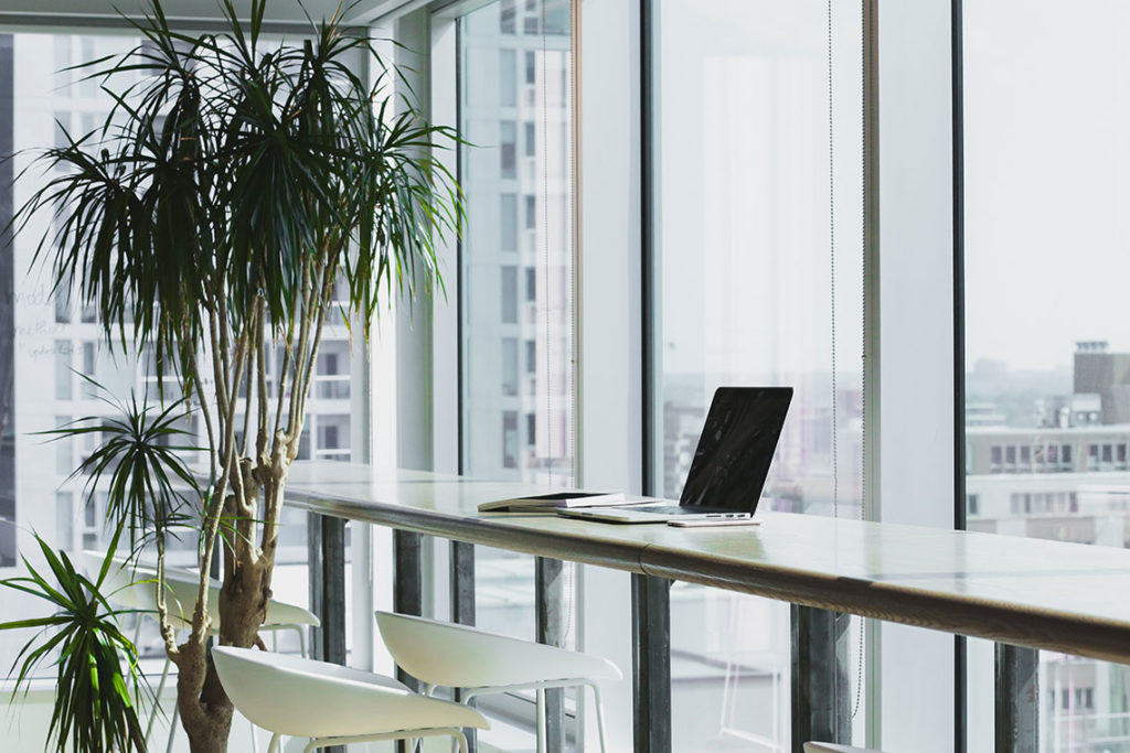 sustainable-office-with-plants